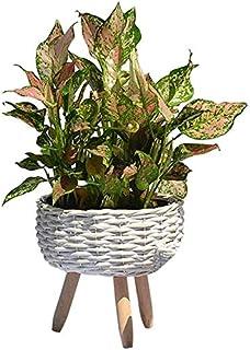 Bcaer Classique à la main Tissé de fleur tissé décorations de fleur de fleur de fleur de fleur en pot Panier de paille de ...
