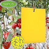 zoore 50 pezzi di trappole appiccicose per parassiti delle piante, double - face (20x15 cm, fascette incluse)