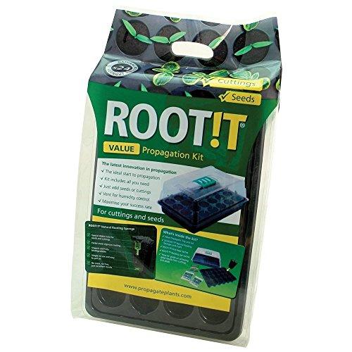 ROOT!T Value Kit di Propagazione con Spugne per la Radicazione