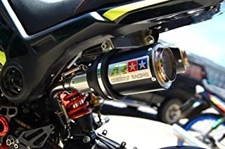 Dual High Mount Aodonly Racing Exhaust For Honda Grom Msx 2013-2019 All Model and SSR Razkull 125