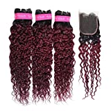 FEEL ME Water Wave Bundles with Closure 1b/99j Red Burgundy Ombre Human Hair Bundles with Closure Unprocessed Brazilian Virgin Hair 3 Bundles with Closure Ombre Brazilian Hair(12 14 16+12)