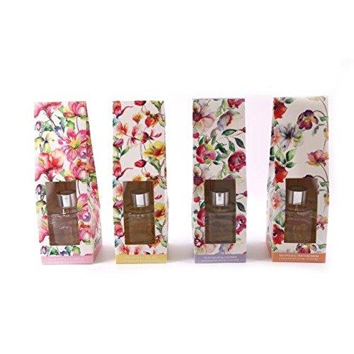 Sifcon Wasserfarben Diffusoren 4 Düfte - Primel Blätter, Magnolia, Orientalisch Lilly & Pfingstrose Rouge - Magnolia & Pfirsich Blüten