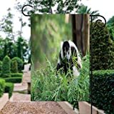 ALUONI Season Garden Flags - Black and White Ruffed Lemur Double Sided Outdoor Holidays Yard Flags - Made of Polyester 12'x18' IS122999