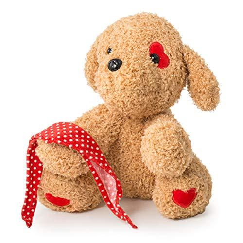 "Valentine's Day Bear 12""Valentines Gift for Girlfriend, Boyfriend, Plush Stuffed Animal (Eyes with red Heart)"
