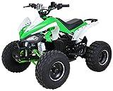 Niños eléctrico Quad S de 14Speedy 1000W Miniquad infantil Vehículo midiquad
