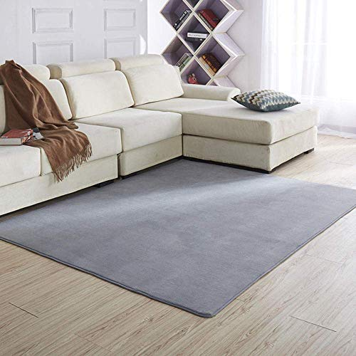 Shaggy Rugs Soft plain Thick Pile, alfombra de terciopelo coral, tapete engrosado para el piso de la sala de estar-Gris plateado_80 * 160cm, alfombra de sala de estar ultra suave que no se desprende