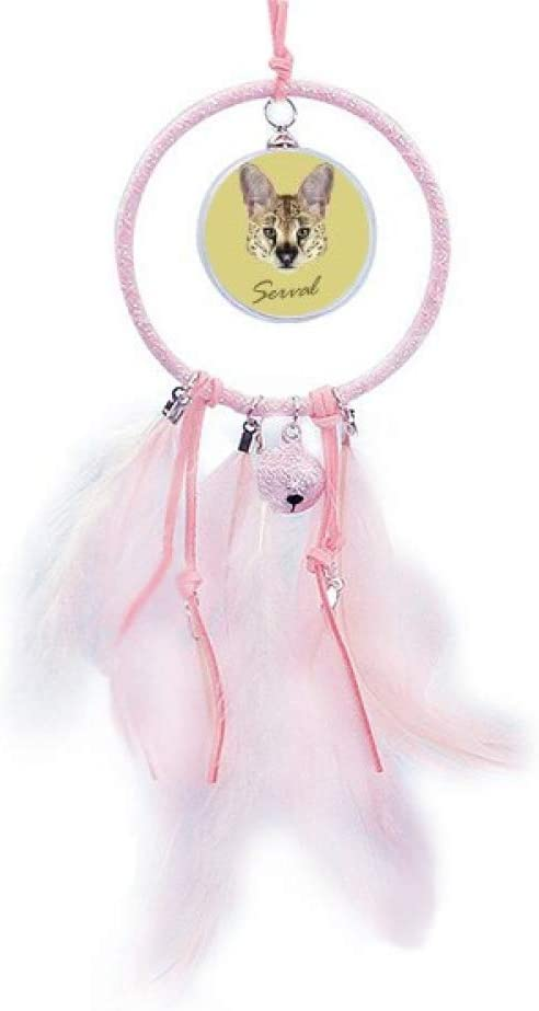 Beauty Gift Long-eard Milwaukee Mall Spotted Wild Animal S Dream Serval Ranking TOP12 Catcher