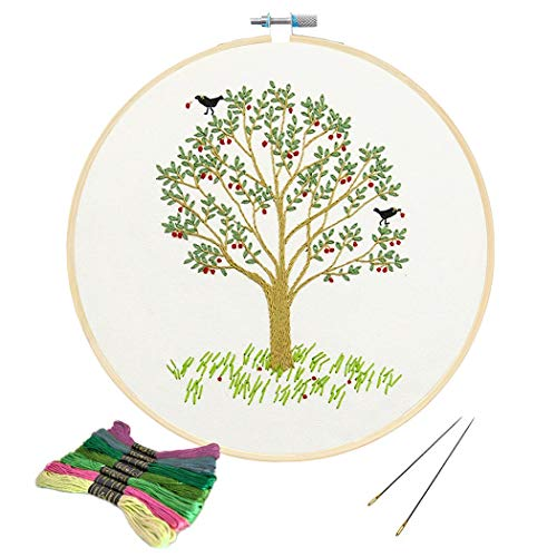 Full Range of Embroidery Starter Kit with Pattern, Kissbuty Cross Stitch Kit Including Embroidery Cloth with Plant Pattern, Bamboo Embroidery Hoop, Color Threads and Tools Kit (Embroidery Kit-19)