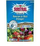 Substral Osmocote - Fertilizzante per bacche e frutta, 750 g