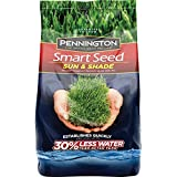 Best Bermuda Grass Seeds - Pennington Smart Seed Sun and Shade Grass Seed Review