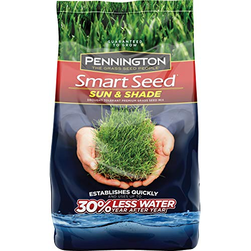 Pennington Smart Seed Sun and Shade Grass Seed, 20 LBS