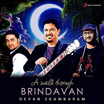 A Walk Through Brindavan
