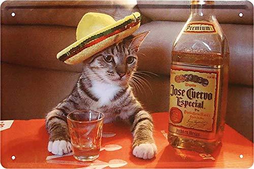 Blechschild Lustiges Motiv Tequila Alkohol Deko Katze Humor Katzenschild Türschild Metallschild Schild Witziges Geschenk zum Geburtstag oder Weihnachten 20x30 cm