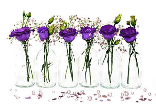 casa-vetro 12 kleine Flaschen Vasen 100 ml Set Mini-TR-Apotheker Glasflaschen klar Deko Hochzeit (12 x 100 ml)