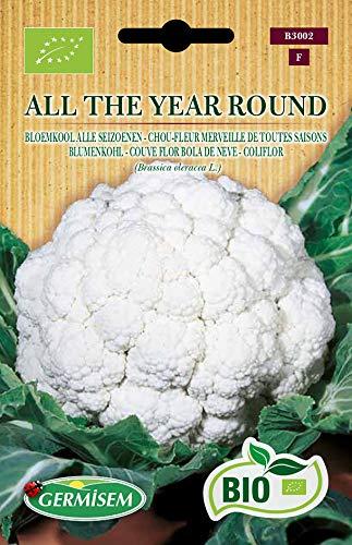 Germisem Organisch All The Year Round Bloemkool Zaden 2 g