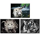 Piy Painting - Pictures Print on Canvas - Cheetah and Tiger Painting – Ready to Hang HD Canvas Paintings with Frame - Wall Art Décor Image for Living Room Birthday Gift (12x16inch, 3Pics)