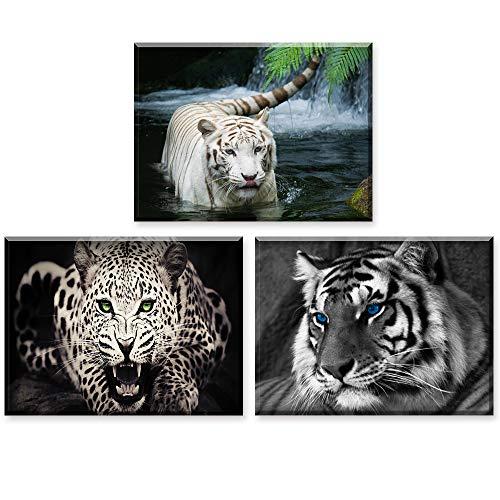 Piy Painting, Cuadro En Lienzo, Guepardo Y Tigre Foto, Listo para Colgar Fotos con Marco, Animales Imágenes para Hogar Decoración, Arte De Pared Fotos para Regalo De Cumpleaños (30x40cm, 3pics)
