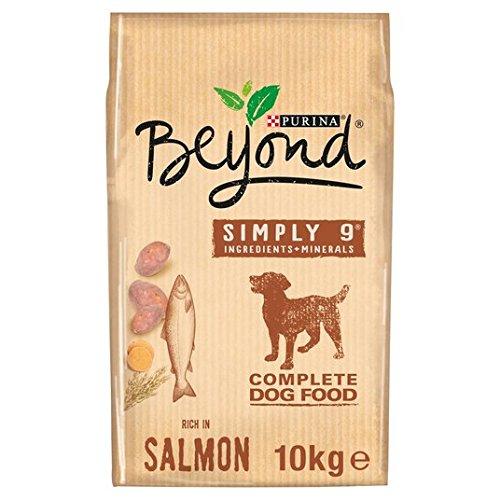 Beyond Superfood Blend, Hundefutter, Reich an Lachs mit Hafer & Süßkartoffeln, 10kg