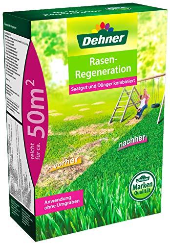 Dehner Rasen-Regeneration, 2 kg, für ca. 50 qm