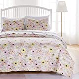 Greenland Home Fashions Misty Bloom Quilt and Pillow Sham Set, Pink, 3-Piece Full/Queen