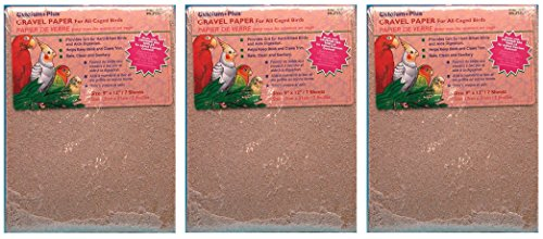 Penn Plax (3 Pack) Gravel Paper for Bird Cages, 9' x 12' (7 Sheets Per Pack / 21 Sheets Total)
