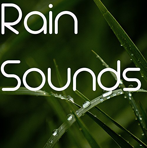 10 Rain and Nature Sounds to Loop for Mediation and Sleep