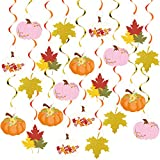 20Pcs Fall Party Hanging Swirl Decorations, Autumn Pumpkin Maple Leaf Thanksgiving Hanging Foil Swirls Streamers, Fall Themed Door Ceiling Decoration for Thanksgiving Halloween Birthday Party Supplies