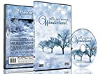 Christmas DVD - Falling Snow & Winter Wonderland with Beautiful Winter Scenery and Snowfall