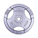 inSPORTline Steel Plate 1.25 kg Dumbbell Weight Plate Home Gym Equipment Perfect for Fitness Bodybuilding Weight Lifting - 1.25kg Pair