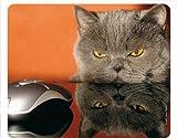 'KATZE UND MAUS - GRUMPY CAT' (MOTIV 51 - KATZEN): Lustiges Tier-Mousepad / Mauspad - Qualitäts-Mousepad aus extrem reissfestem Spezialkautschuk mit stark haftender Unterseite für optimalen Halt - kompatibel für alle Maustypen