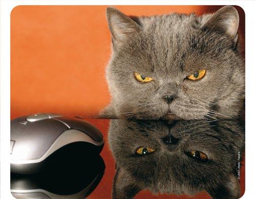 CHAT ET SOURIS Tapis de souris animal drôle - avec de qualité en caoutchouc spécial extrêmement résistant à la déchirure et une face inférieure fortement adhésive pour une tenue optimale