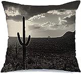 Decoración Throw Pillow Cover Funda de cojín Estudio blanco y negro Desierto de Sonora Paisaje del norte Saguaro in Cacti Cholla Prickly Pear Cactus Along Funda de Cojine 45 X 45CM