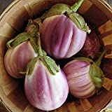 Wayland Chiles Rosa Bianca Eggplant 30 Seeds Made in USA New