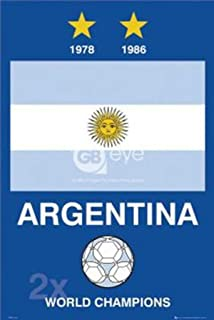 Argentina World Cup Poster 24 x 36in