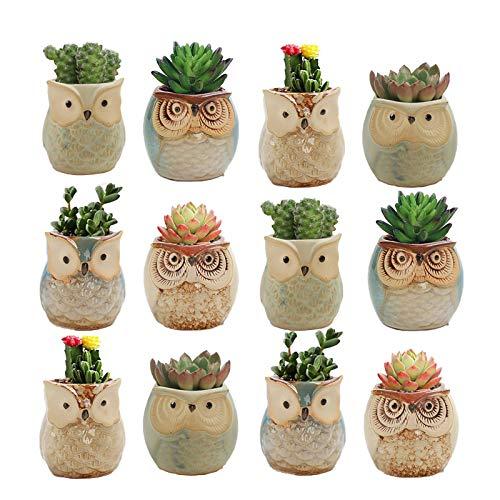 12PCS Owl Pot Ceramic Flowing Glaze Base Serial Set Mini Succulent Plant Pot Cactus Plant Pot Container Planter Bonsai Pots with A Hole - Thanksgiving, Halloween, Christmas, New Year Party Supplies