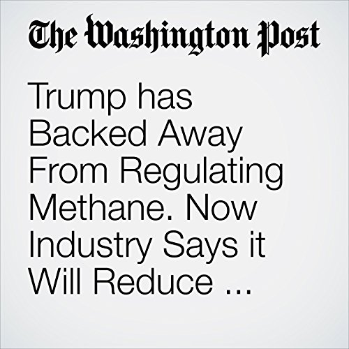 Trump has Backed Away From Regulating Methane. Now Industry Says it Will Reduce Emissions Itself. copertina