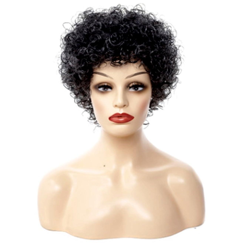 アレンジ未使用スカルクJIANFU 小さな髪の短いバースト、快適な$調整可能な色のかつらに完璧なフィットのためのモノクロハーモニー-30cmナチュラルウィメンズウィッグ (Color : Black and white harmony)