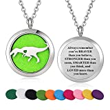 Stainless Steel Tyrannosaurus Rex Dinosaur Animal Aroma Therapy Aromatherapy Essential Oil Diffuser Locket Necklace Pendant (Style 27)
