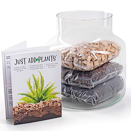 Annastore XXL Pflanzenterrarium inklusive allem - Nur noch Pflanze dazu - Fertig H 30 cm/H 18 / oder H 20- Pflanzenglas - Flaschengarten (H 20 Ø 19 cm ohne Korken)