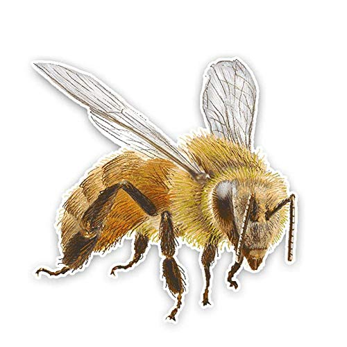 QULIN Cartoon bee PVC sticker car decal waterproof sunscreen decoration laptop door and window accessories 14cm * 14cm
