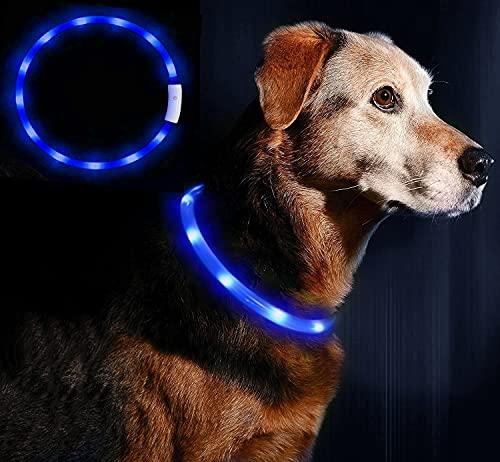 LED Leuchthalsband Hunde Halsband - Anicoll USB wiederaufladbar - Längenverstellbarer Haustier Sicherheit Kragen für Hunde und Katzen- 4 Modus 12 Lichte (Blau)