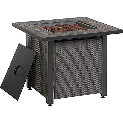 Endless Summer 30-in W 50000-BTU Grey Tabletop Steel Propane Gas Fire Table -  Blue Rhino, GAD15259SP