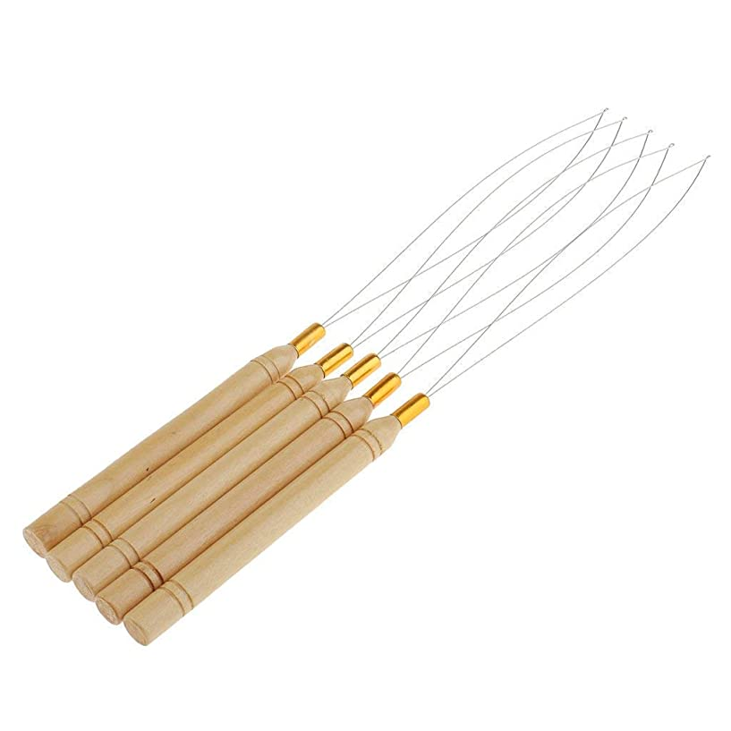 慢悲しいことに信者Sitrda 5Pcs木製の髪の延長ループループの針の糸を引っ張るフックツール