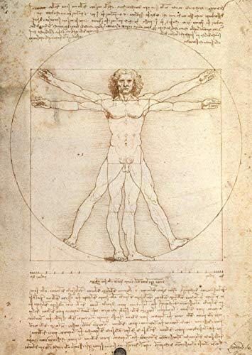 ZPTECH Rompecabezas Familiar para Adultos Creative Jigsaw Puzzles 1000 Pieza Adultos Niños Arte Puzzles Vitruvian Man Leonardo Da Vinci 1000 Piezas