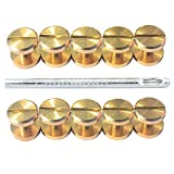 DGOL 12 Pairs Brass Backscrews with Hole Punch Golden Leather Fasteners Sturdy Binding Rivets Belt Strap Collar Back Screws Length (0.158 inch)