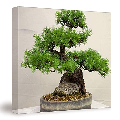 SUPNON Larch Bonsai/Canvas Wall Art, Mordern Home Decoration 12'x12' №IS134942