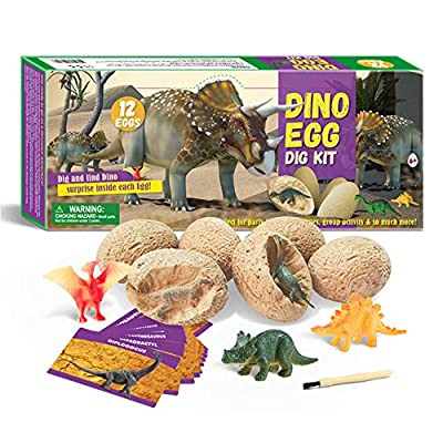 Dinosaur Egg Digging Kit, 12 Different Dinosaur Fossil Dinosaur Eggs, Easter Archeology Science Educational Toy, Suitable for Gifts and Toys for Boys and Girls Over 3 4 5 6 7 Years Old