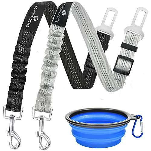 catadog Dog Seatbelt Leash for Cars, 2Pack Pet Safety Seat Belt Harness with Shock Absorbing Bungee and Reflective Threads for Car Dogs Restraint (Silver + Black)