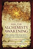 2020: the Alchemists' Awakening Volume One: Decoding the ancient future of consciousness, claim your power and authenticity, choose freedom over fear, portalism, awakening the alchemist, initiation