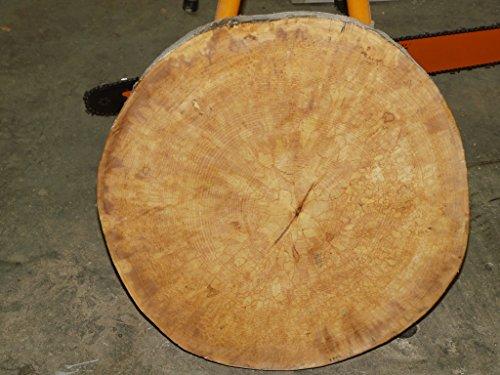 Baumscheibe, Holzscheibe, ca. 55 x 5 cm, basteln, Holz, Tisch, Esstisch, geschliffen und geölt